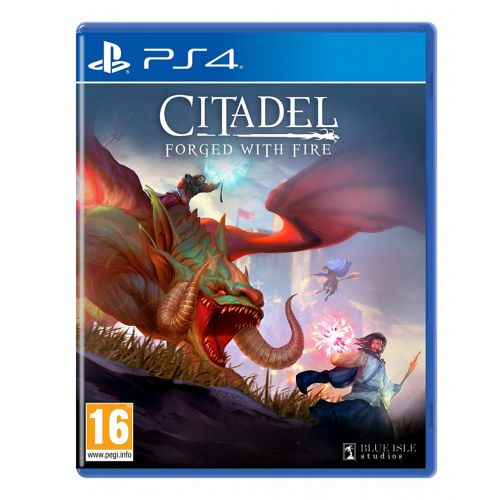 (Sold Out) 【PS4】Citadel: Forged With Fire